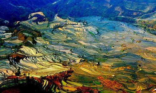 180902_China_2.jpg