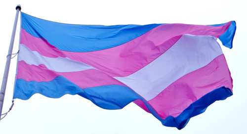 bandeira trans.jpg