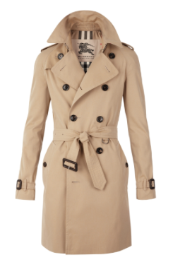 burberry trench coat.png