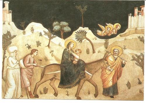 A fuga para o Egipto Gioto.jpg