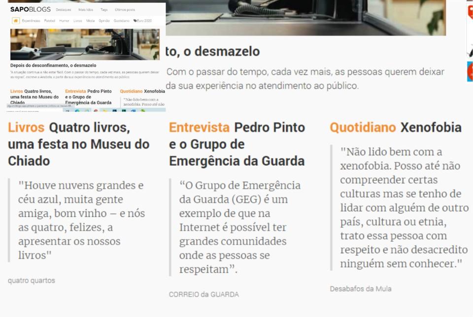 Sapos Blogs.jpg