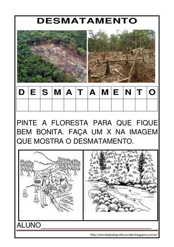 atividades-sobre-desmatamentocincia-1-638.jpg