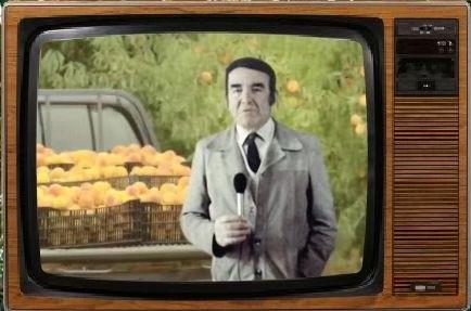 TV Rural - eng sousa Veloso