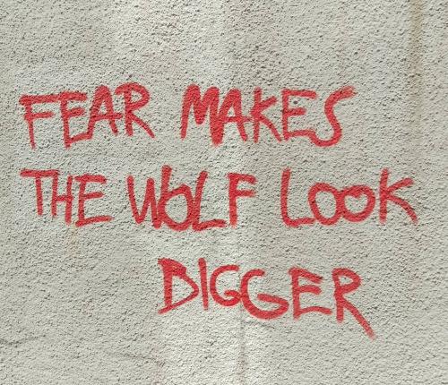 the wolf.jpg