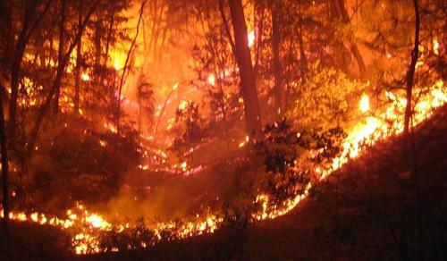 incendio_SAPO3.jpg