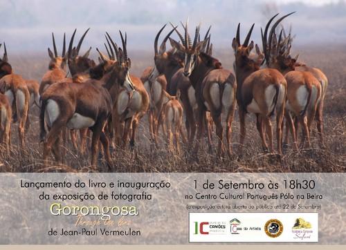 Poster_Gorongosa through the lens L.jpg