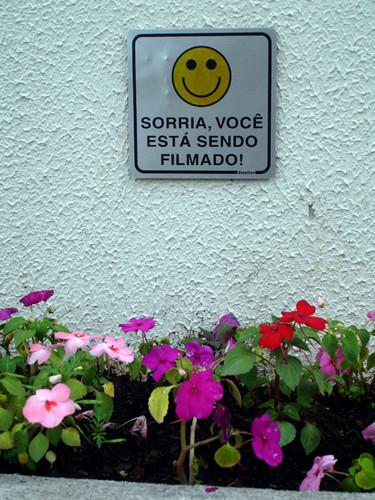 floreira_blog2.jpg