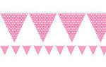 Hot-Pink-Polka-Dot-Bunting_th2-001.JPG