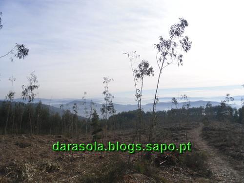 Trilho_Eiras_Famalicao_12.JPG