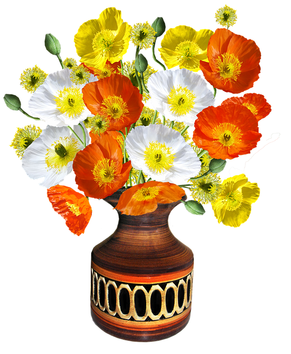 poppies-2915833_960_720ab.png