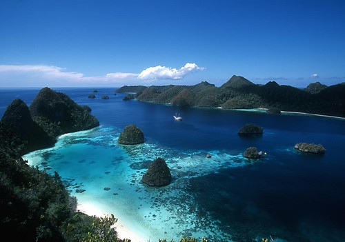 BEAUTIFUL! THE CORAL TRIANGLE 1