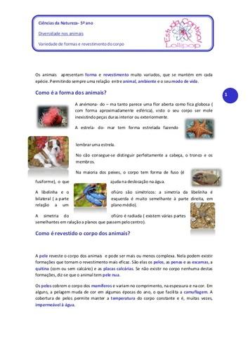diversidade-nos-animais-variedade-de-formas-e-reve
