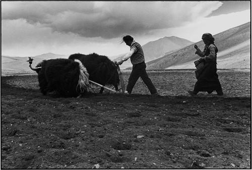TIBET. Xigaze, about 300 kilometers west of Lhasa.