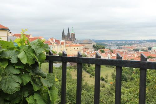IMG_1547 Praga
