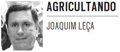 logo+foto.agricultando1.revista..png