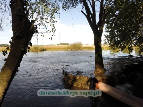 Margens rio Ave Trofa 16.JPG