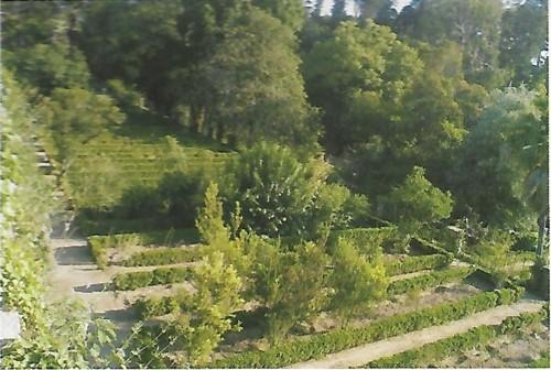 Jardim Botânico canteiros.jpg