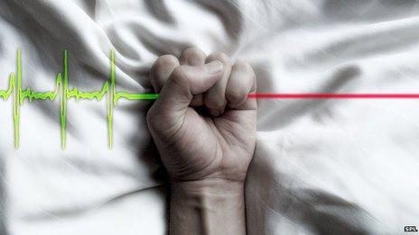 euthanasia.jpg
