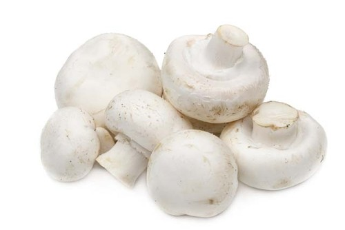 14-b-whitemushrooms.jpg