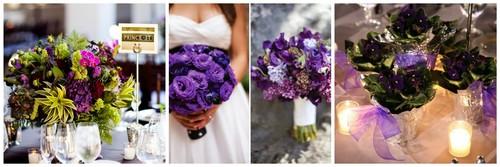 violetas.jpg