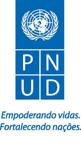 PNUD oficial (1).png
