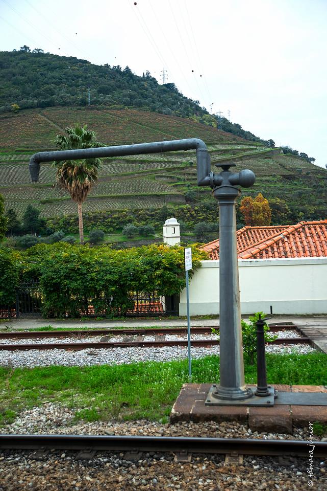 (03)2015 - Outono no Douro Vinhateiro II (182).jpg