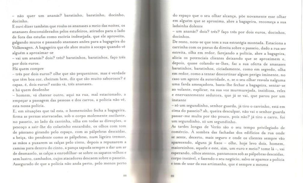 Paula de Sousa Lima - O vendedor de ananases (2).j