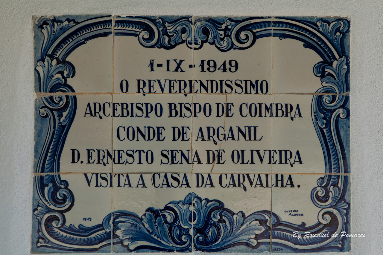 Casa da Carvalha (23)