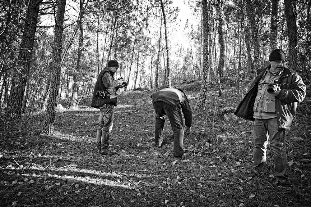 montalegre+matança abobeleira 2014 257 - Cópia.j