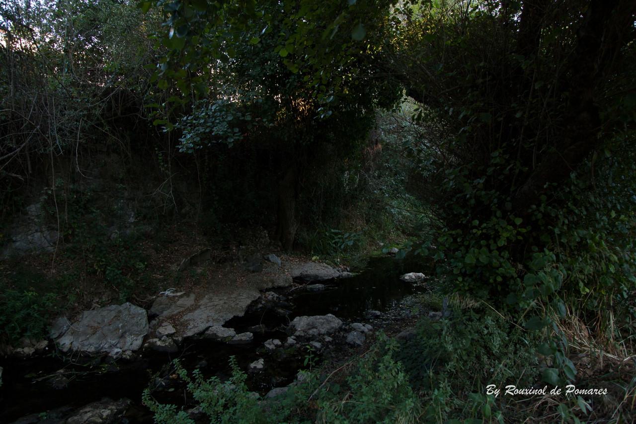 3ª Caminhada com Stória em Agualva-Cacém (31)