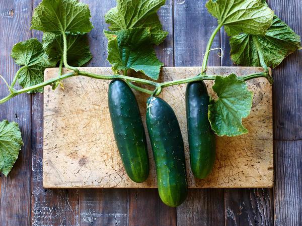 22_Week_Cucumber_4x3.jpg