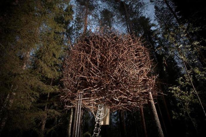 Treehotel-Sweden-Birds-Nest.jpg