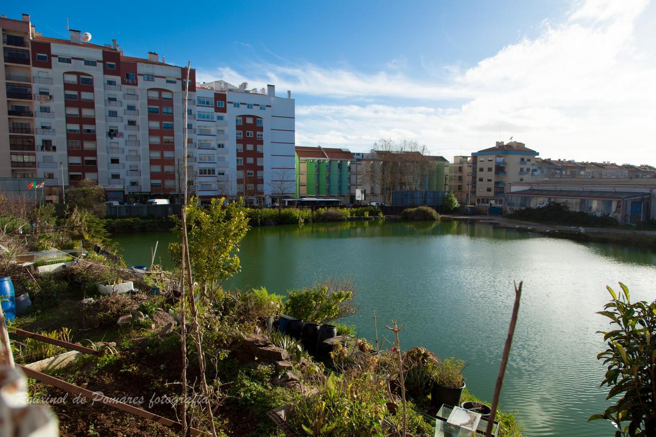 Pela minha cidade de Agualva-Cacém (I) (4)