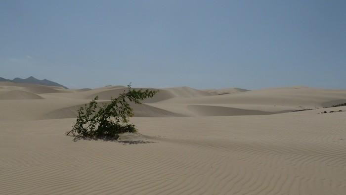 1 Deserto de Viana 2.jpg