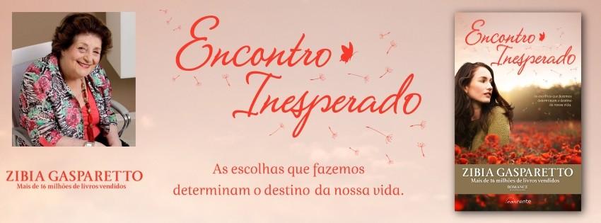 Encontro Inesperado.jpg