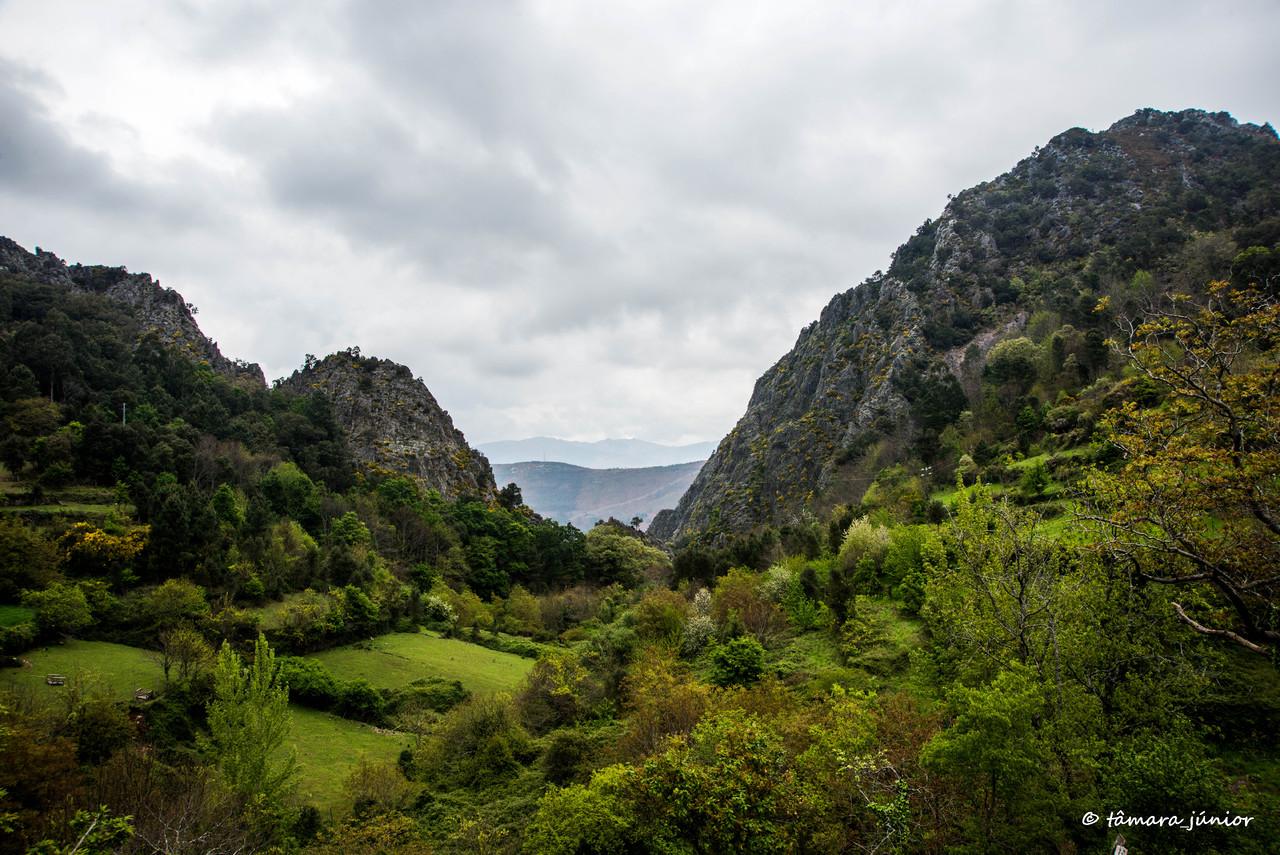 2015 - S. Pdro do Sul (Termas+Manhouce+Pena) (302)