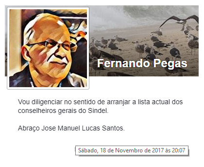 FernandoPegas4.png