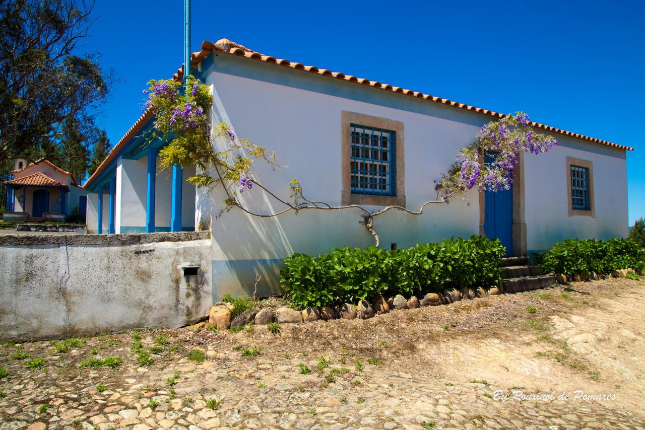 Casa da Carvalha (18)