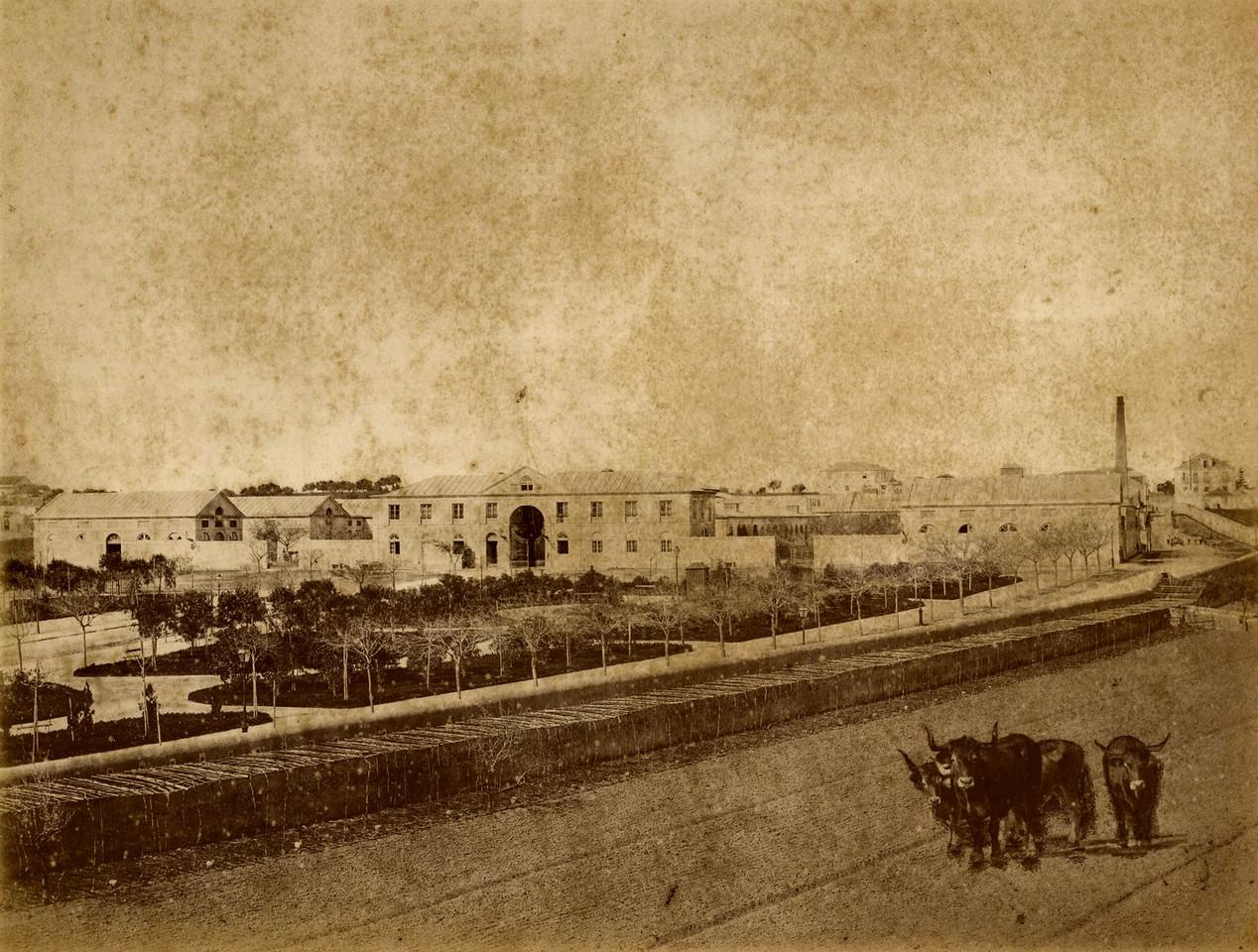 Matadouro Municipal, Lisboa (H. Nunes, 1868-81)