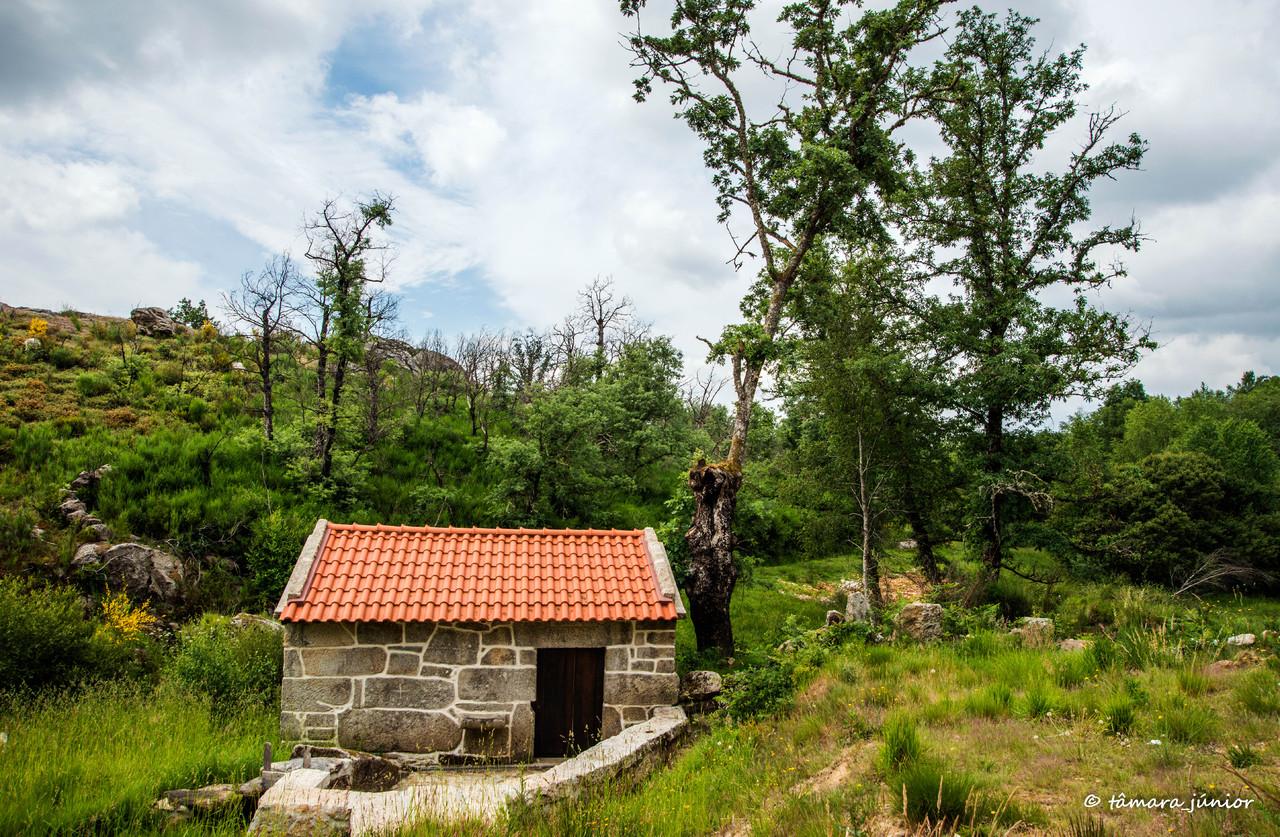 2015 - Cascata de Fírvidas (Montalegre) (1).jpg