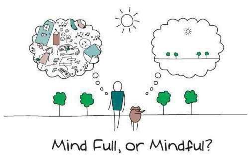 mindful1.jpg