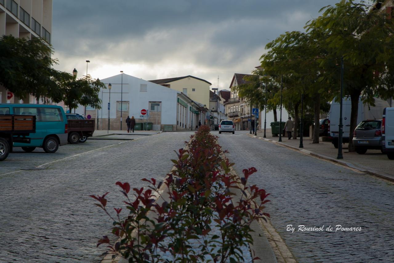 Outono em Murça (11).JPG