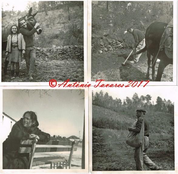 Fotos primeira máquina.jpg