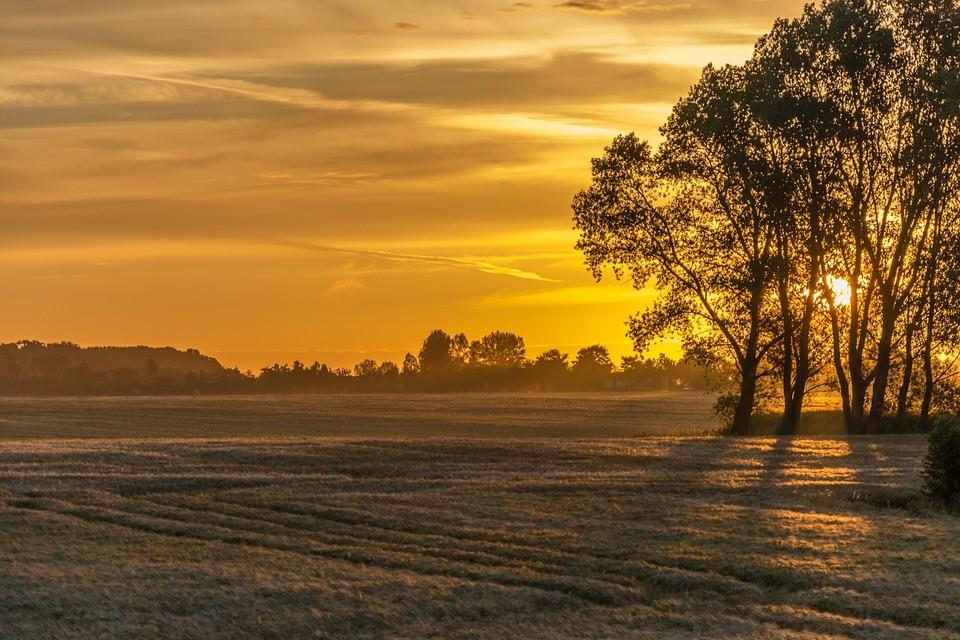 sunrise-827931_960_720.jpg