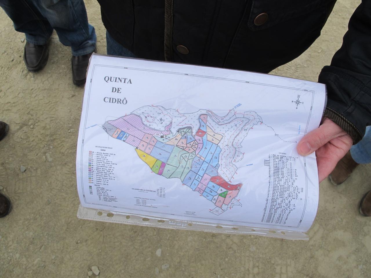 O mapa da quinta
