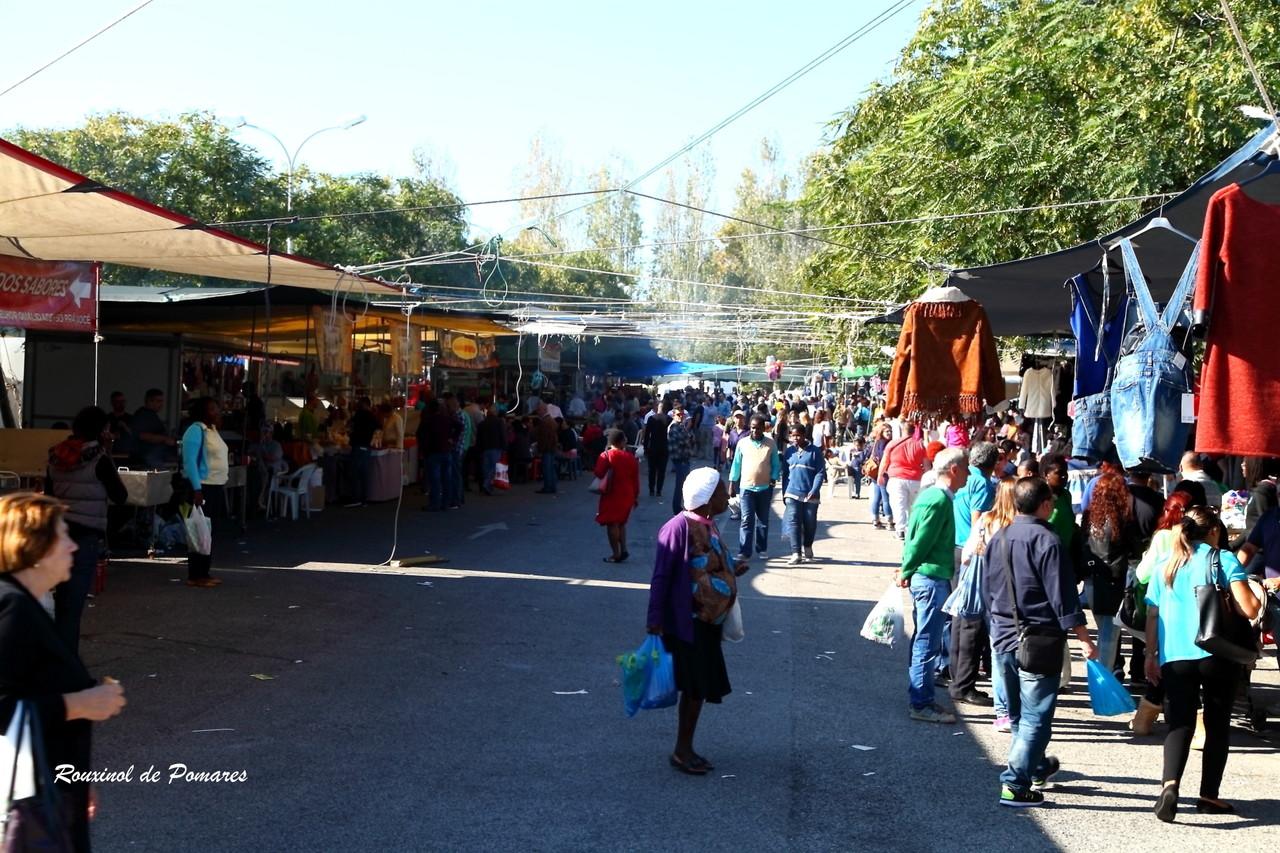 aqui também há feiras (0010)