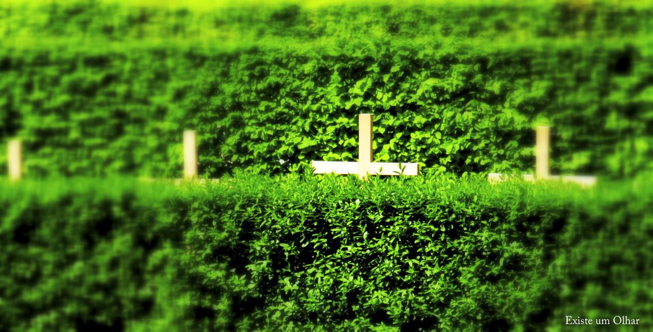 Todos temos uma cruz