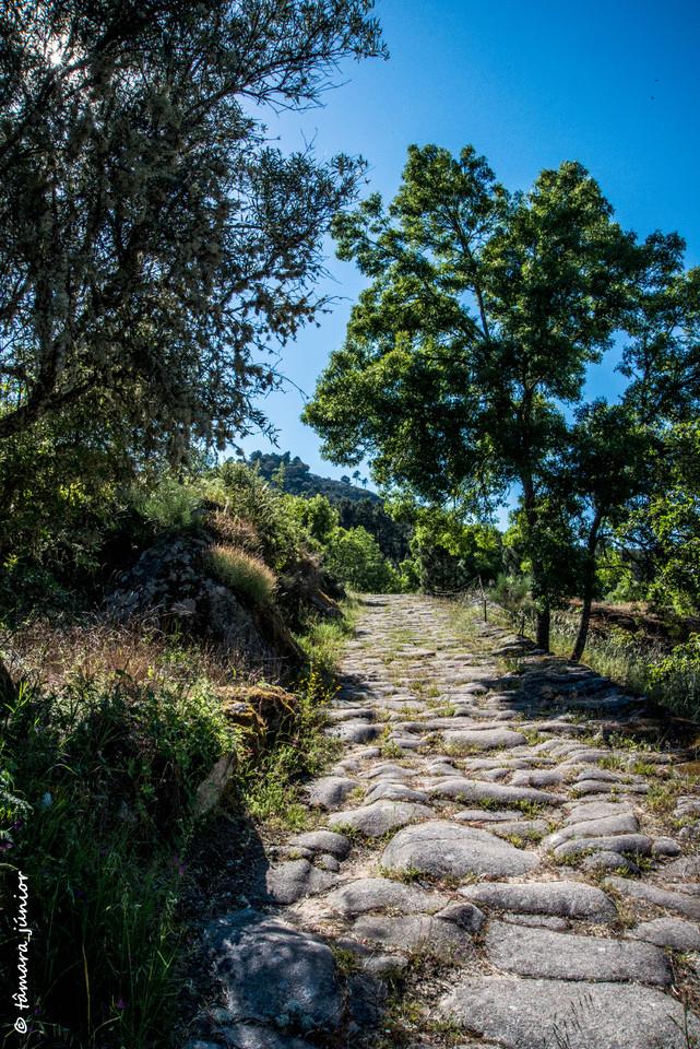 12.- Via romana de Murça.jpg