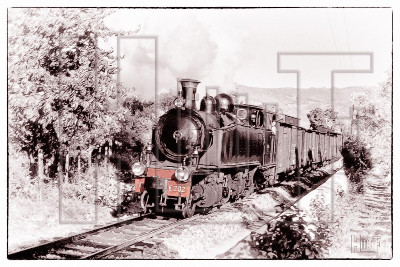 CP0131.jpg