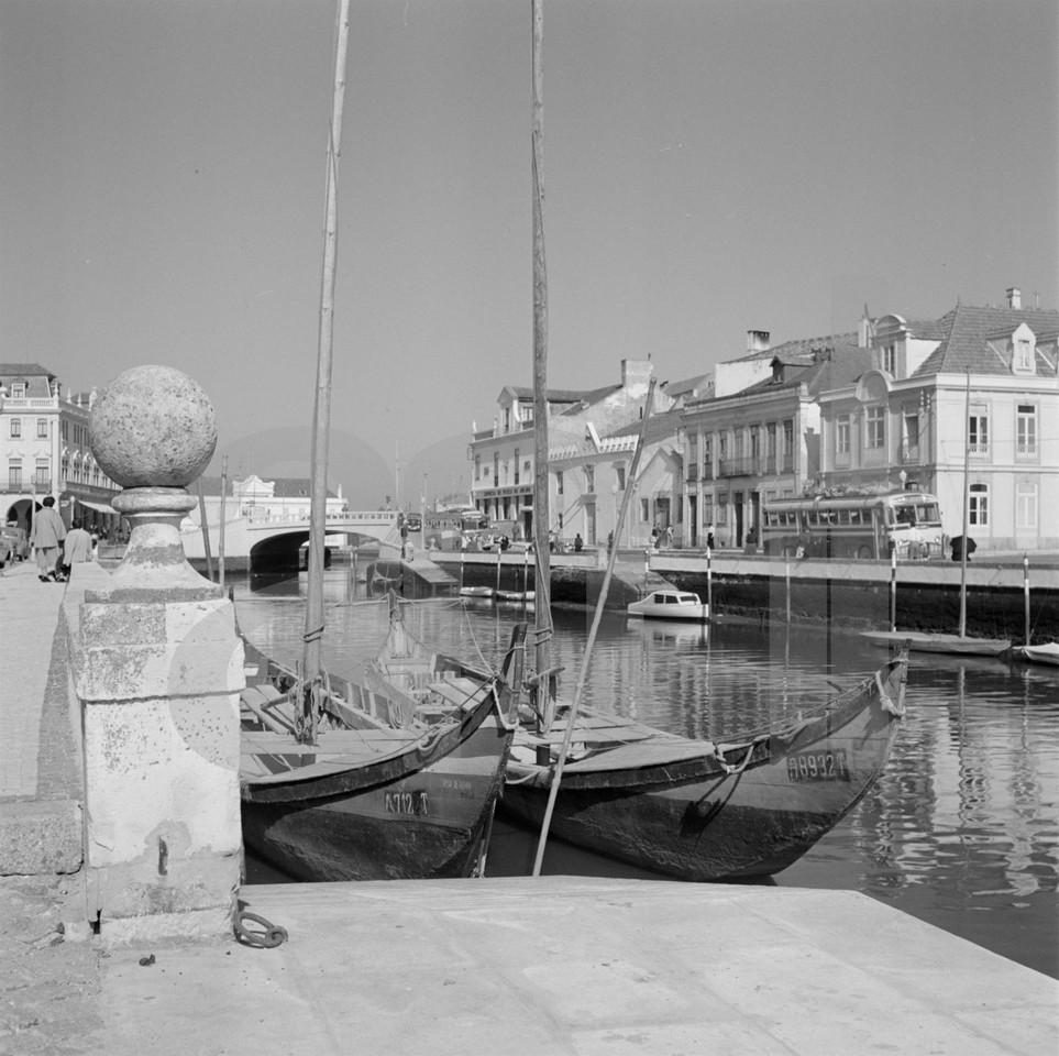 Barcos moliceiros, Aveiro (A. Pastro, c. 1952)